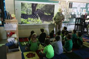 Mrs. Bertelli with Mrs. Lemieux's 1st grade class on a live safari in South Africa